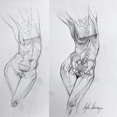Anatomía de Mujer exterior e interior boceto