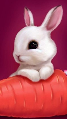 Cute New Year Rabbit Wallpaper Easter Bunny Images, Funny Easter Bunny, Cute Baby Bunnies, Happy Easter, Cute Bunny Pictures, Easter Pictures, Bunny Meme, Ostern Wallpaper, Rabbit Wallpaper