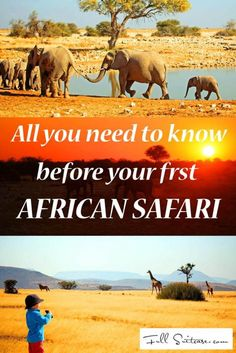 Everything you need to know before your first African safari: clothing advice, packing list, safari rides and more.