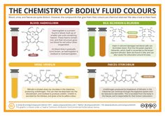 A particular bodily fluid featured in the political news earlier this week, which got me thinking about the chemical causes behind the colours of the waste products we expel from our bodies.&n…