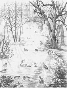 Pencil Sketch Stanley Park Landscape Sketch drawing waterfowl. View from the cement bridge over Lost Lagoon's Creek in Stanley park pencil drawing  by Canadian Vancouver BC Artist INDIGO aka Kim Hunter Pencil Sketches / Drawings / Illustration Flowers Wildlife Landscapes Sketches Ink Drawings & Original Art & illustration landscape sketches, wildlife, nudes, people, portraits, pets, Art & Design Pencil, graphite & ink sketches & drawings by Kim Hunter freelance professional artist