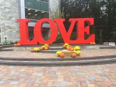 Let's spread love! Nicotra Building updated this space with Cambridge Pavingstones with ArmorTec.