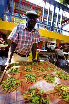 SEYCHELLES EL REINO DEL AZUL Y EL VERDE  Puesto de guindilla en el mercado