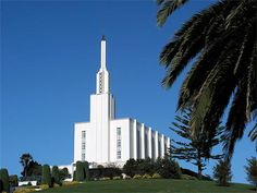 Baptisms!! (unless we have gone through the temple before we go?) Hamilton, NZ Temple!