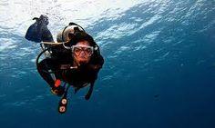 Scuba dive in the coral reefs!