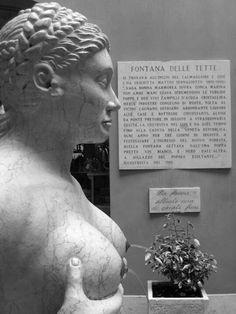 """Fontana delle tette"" in Treviso"
