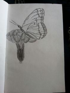 De wens om te vliegen [butterfly]