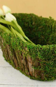 Moss Natural & Artificial