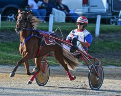 Harness racing 9/14 #3