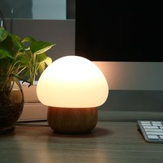 Night Light Mushroom Lamp Baby LED with Wireless Remote Control 16 Different Colors for Kids(Plug in) * Read more reviews of the product by visiting the link on the image. (This is an affiliate link and I receive a commission for the sales)