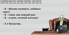 Рекламная пауза | Don-Ald.Ru