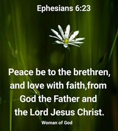 Serve The Lord, The Brethren, Motivational Words, Godly Woman, Inspirational Message, Reign, Jesus Christ, Faith, Peace