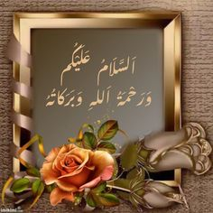Beautiful Rose Flowers, Art Quotes, Chalkboard, Frame, Home Decor, Jumma Mubarak, Morning Quotes, Islamic Quotes, Emoji