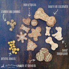 Panier de noël pour chiens   Cadeau de noël pour chiens   Biscuits BIO pour chiens