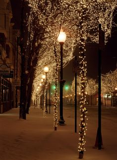 Downtown tree lighting in Littleton, Colorado Cosy Christmas, Christmas Lights, Christmas Time, Christmas Decorations, Xmas, Street Trees, Night Aesthetic, Winter Scenery, Winter Night