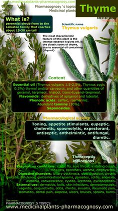 Thyme. Infographic. Summary of the general characteristics of the Thyme plant. Medicinal properties, benefits and uses more common of Thyme. http://www.medicinalplants-pharmacognosy.com/herbs-medicinal-plants/thyme-health-benefits/infographic-thyme/