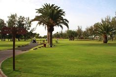 Maspalomas Golf Course 1-st Tee  http://travellingwizards.com/golf/maspalomas-golf
