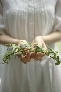 """How to Plant Climbing Vines Indoors!  """"When you want to add more greenery and flowers inside your home, consider planting climbing vines indoors."""""""