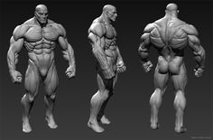ManRoid Anatomy, Chris Pollitt on ArtStation at…