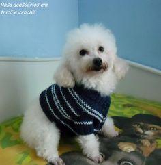 Rosa acessórios em tricô & crochê: Blusinha para cachorro