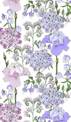 Floral pattern in pink lilac flowers. Irises, Phlox phacelia and pansies. - Floral pattern in pink lilac flowers. Irises, Phlox phacelia and pansies. Lilac Flowers, Rare Flowers, Floral Drawing, Art Floral, Drawing Flowers, Burning Flowers, Scrapbook Background, Pansies, Daffodils