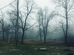 See more of hannahing's VSCO. Phography  Winter Fog