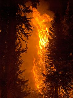 The Springs Fire, Banks-Garden Valley, Idaho, Boise National Forest, August 13, 2012
