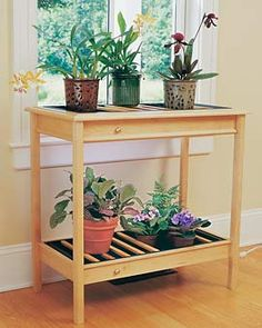 Beautiful plant table