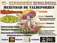 VI EXPOSICIÓN MICOLÓGICA EN LA MERINDAD DE VALDEPORRES 15 y 16 de noviembre En la vieja estación de Santelices