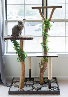 Make a homemade cat condo! Learn how to make an aesthetically pleasing DIY cat tree using Ikea tables, fabric, and a few other supplies. Tree Stump Side Table, Elephant Ear Plant, Diy Cat Tree, Tower Garden, Balcony Garden, Cat Carrier, Cat Condo, Succulent Terrarium, Succulent Care