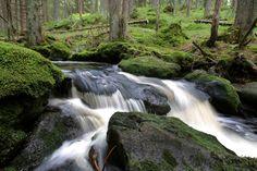 Sumava, Czech Republic Future Travel, Czech Republic, Waterfalls, Europe, Beauty, Pictures, Beauty Illustration, Bohemia, Falling Waters