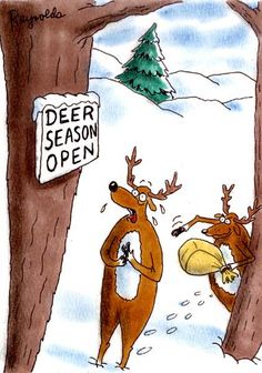 Deer Season funny cartoons from CartoonStock directory - the world's largest on-line collection of cartoons and comics. Funny Hunting Pics, Deer Hunting Humor, Hunting Jokes, Funny Deer, Hunting Stuff, Whitetail Hunting, Hunting Pictures, Turkey Hunting, Texas Hunting