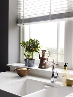 15 Best Kitchen Window Sill Images Kitchen Window Sill