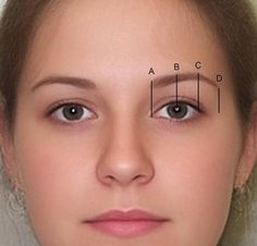 Best Eyebrows For Round Face | eyebrow The Width and Length of The Face