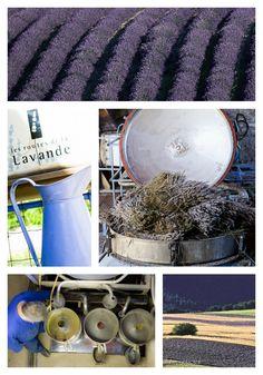 Distillerie Lavande Drôme http://www.bien-etre-drome.com/