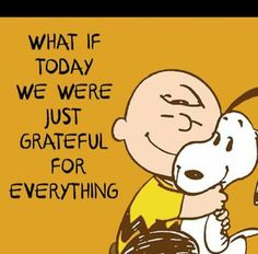 Think every single day what you're grateful for and record it on paper! Charlie Brown and snoopy quote. Life Quotes Love, Me Quotes, Motivational Quotes, Funny Quotes, Crush Quotes, Happy Quotes, Peanuts Quotes, Snoopy Quotes, Peanuts Images