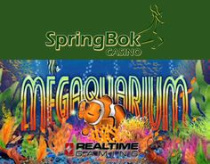 #NewRTGSlot for #SpringbokCasino in February  Springbok Casino to launch Realtime Gaming's Megaquarium online slot in February.  http://www.onlinecasinosonline.co.za/blog/new-rtg-slot-for-springbok-casino-in-february.html