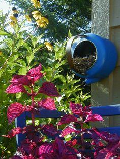 A bird house made from a tea kettle.  #repurpose