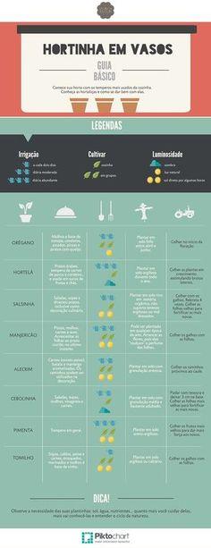 plantando em vaso temperos guia infográfico