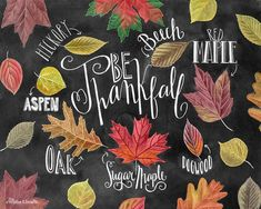 ♥ Be Thankfall ♥ ♥ L I S T I N G ♥ Each image is originally hand drawn with chalk