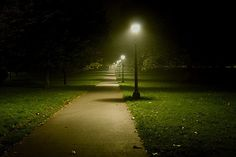 an evening in the park essay