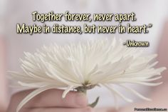 Together forever, never apart. Maybe in distance, but never in heart.  Unknown #Friendship #Quotes   Best Friendship Quotes