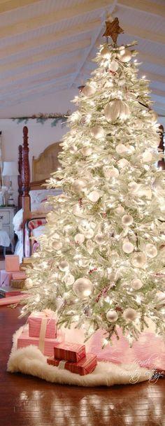 50 Most Beautiful Christmas Trees | Christmas Celebrations