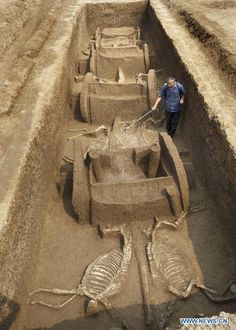 Chariot, horse pits unearthed in central China