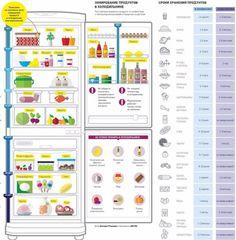 Как правильно хранить продукты в холодильнике. Инфографика. Фото 1