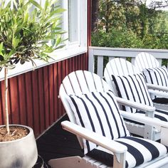 Adirondack chairs and August look in Villa Puomi terrace. Olive trees and black & white pillows.