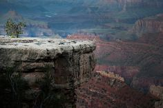Grand Canyon via Route 66 - foto : Mo Sasal