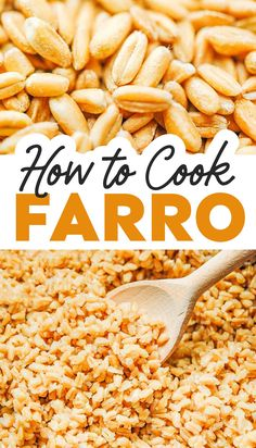 Ditch the rice in favor of farro, a high-protein and fiber option that tastes fantastic. Here's how to cook farro (+ buying and storing tips)! #vegan #grains #farro Vegetarian Italian Recipes, Vegan Dinner Recipes, Vegan Dinners, Lunches And Dinners, How To Cook Farro, How To Cook Rice, Jasmine Rice Recipes, Brown Rice Recipes, Couscous Recipes