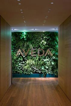 the green wall; less busy. In front of which we take photos with our clients :D . the green wall; Spa Design, Cafe Design, Design Ideas, Green Interior Design, Salon Interior Design, Deco Restaurant, Restaurant Design, Deco Spa, Inspiration Wand