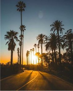 Elysian Park Los Angeles California | CaliforniaFeelings.com #california #cali #LA #CA #SF